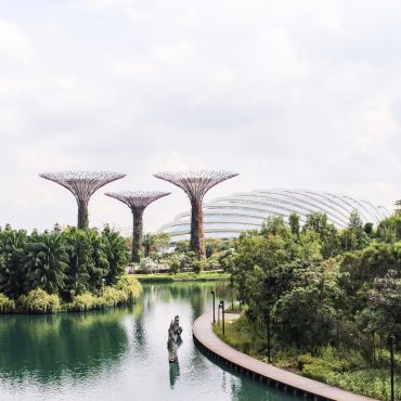 Singapur in 2 Tagen - Gardens By The Bay